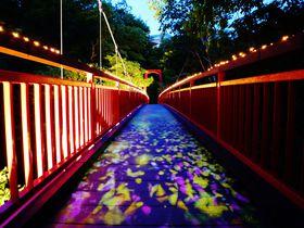 「定山渓ネイチャールミナリエ」は札幌からアクセス良好なライトアップイベント