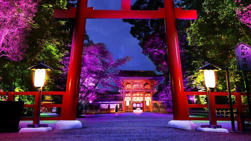 8月の下鴨神社に幻想的なライトアップ「下鴨神社 糺の森の光の祭」