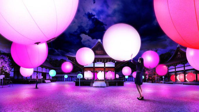 「呼応する球体-下鴨神社 糺の森」