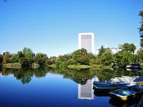 札幌随一のパークビュー「プレミアホテル 中島公園 札幌」で癒しの21時間|北海道|トラベルjp<たびねす>