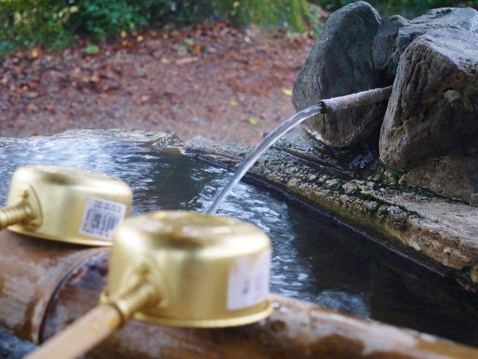 神社の手水舎も温泉!