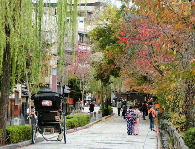 京都に二つのマリベル