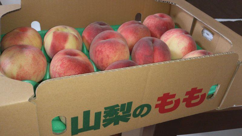 フルーツ王国・山梨へ!今が旬の果物を求めて フルーツラインを走る