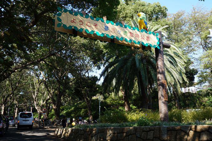 「夢見ケ崎動物公園」とはこんなところ