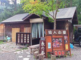 鹿も熊も食らう!仙人在住の『仙人小屋』で八ヶ岳の恵みを堪能♪