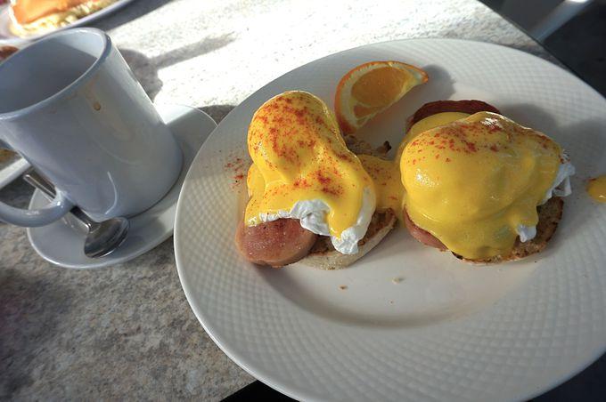 『The Kracked Egg』ザ クラックド エッグ
