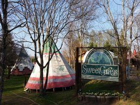 憧れのツリーハウスがココに!北軽井沢スウィートグラスが施設充実で楽しすぎる!|群馬県|トラベルjp<たびねす>