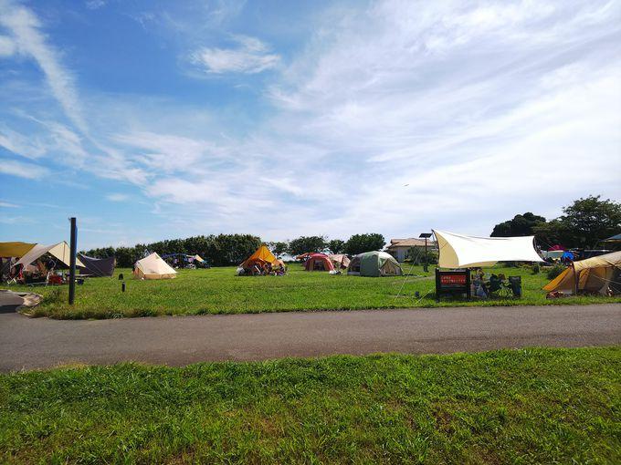 遊び場充実!三浦半島・ソレイユの丘キャンプ場が楽しすぎる!