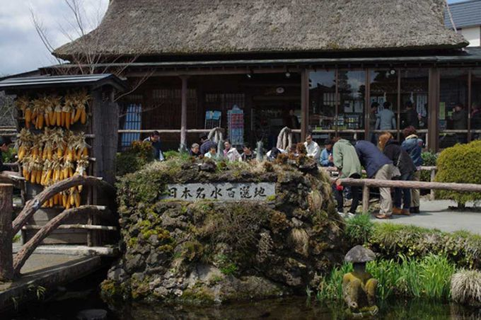 """人集りが出来ているのは、忍野八海で一番人気の""""中池"""""""