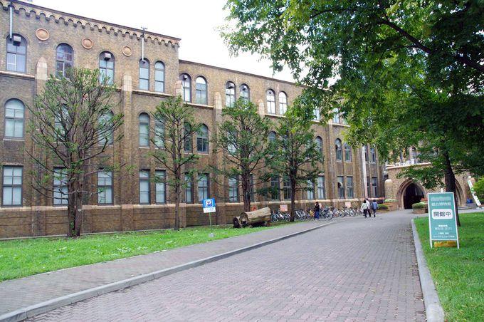 120年の研究成果がつまった、総合博物館