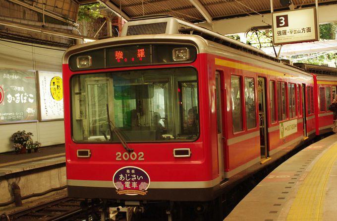 一日中あじさいを堪能できる「箱根登山鉄道」!
