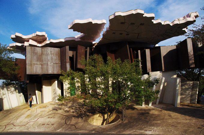 どこを見ても不思議なものばかり!「極限で似るものの家」