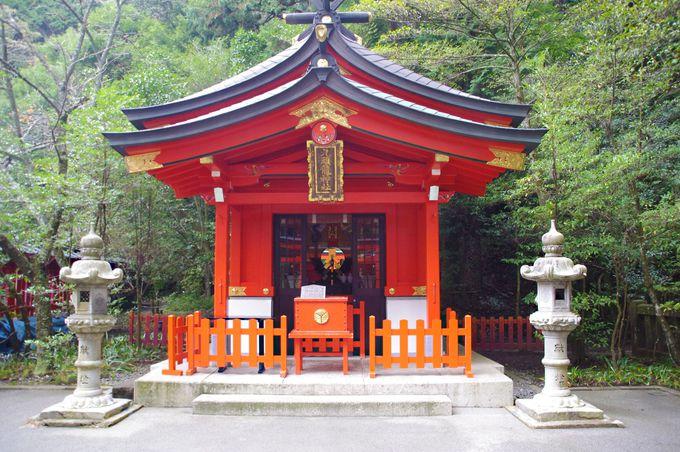 武将たちも祈願した歴史あるパワースポット「箱根神社」