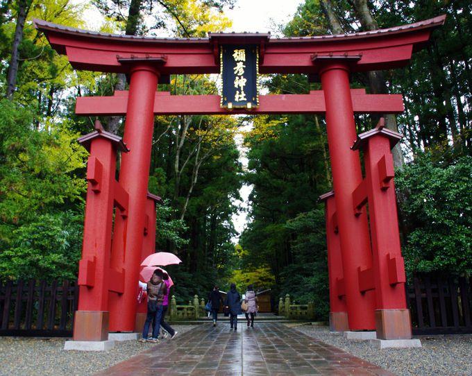 えっ!?柱が浮いてるよ・・・!驚きの彌彦神社「一の鳥居」