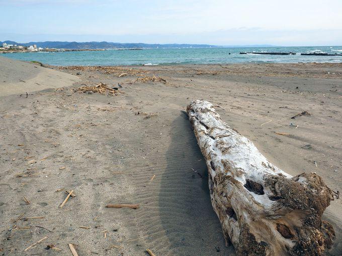 海まで車で5分。海岸の散歩も楽しめます!