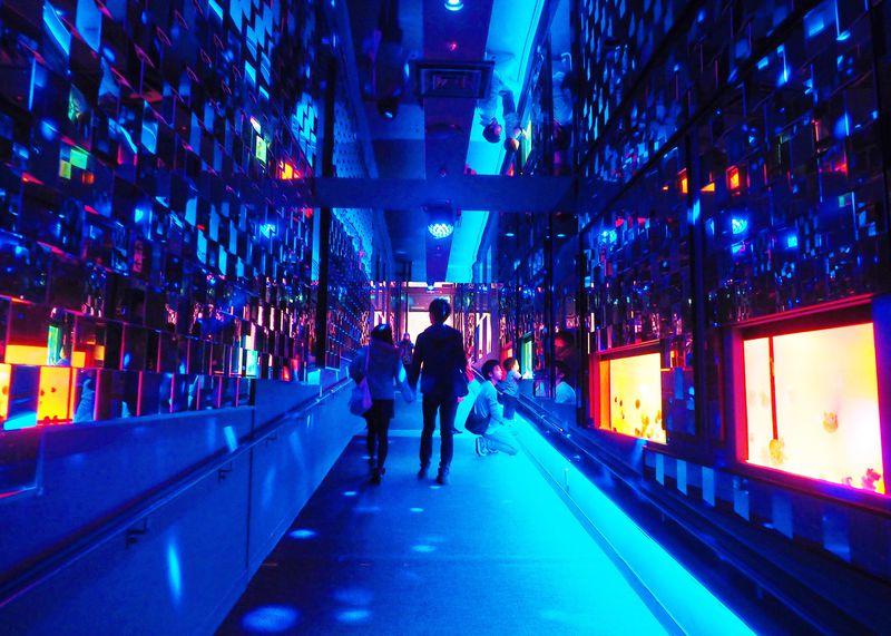 すみだ水族館で開催中!クラゲ万華鏡トンネルで超絶キラキラ空間に包まれる♪
