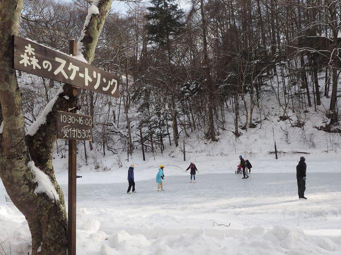 冬だけOPEN!自然の恵がもたらす「森のスケートリンク」