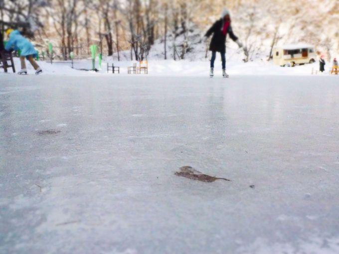 天然氷ならでは。氷の中の不思議な世界