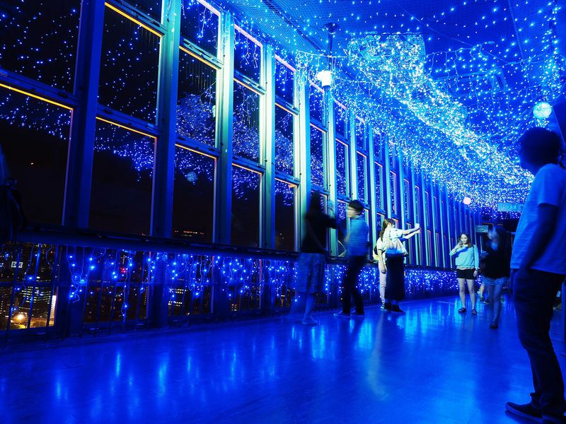 東京タワーで星に願いを!「天の川イルミネーション」を2倍楽しむ鑑賞ガイド