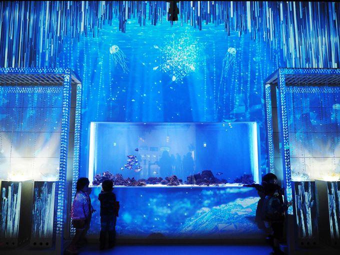 ココって本当に水族館!?超幻想的な氷の世界「マクセル アクアパーク品川」(東京)