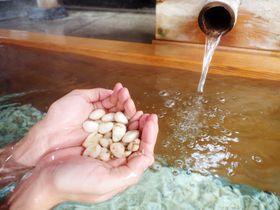 神様直結の温泉がここに!信州 下諏訪温泉「みなとや旅館」|長野県|トラベルjp<たびねす>