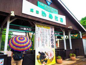 降水確率100%で入場無料!?千葉「成田ゆめ牧場」の裏技で雨の週末を楽しもう