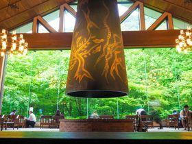青森の2つの星野リゾート「奥入瀬渓流ホテル」と「青森屋」はココが違う!選び方のポイント|青森県|トラベルjp<たびねす>