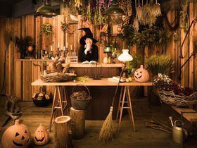 星野リゾートが魔女の宅急便の世界に!リゾナーレ熱海「ハロウィンイベント」|静岡県|トラベルjp<たびねす>