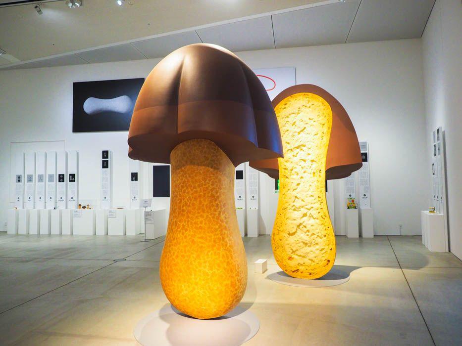 「デザインの解剖展」とは