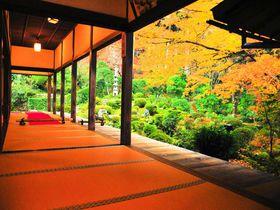 京都の紅葉は誰もいない寺社で!「京都ブライトンホテル」特別プランが人気|京都府|トラベルjp<たびねす>