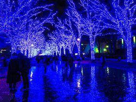 「青の洞窟」が渋谷で復活!幻想イルミネーションで青い魔法にかかろう|東京都|トラベルjp<たびねす>