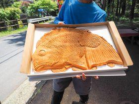 まるで抱き枕!静岡・丸子峠大鯛焼き屋の「世界一大きい鯛焼き」|静岡県|トラベルjp<たびねす>