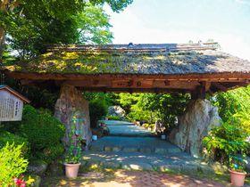 R18指定の古民家日帰り温泉!静岡「茶目湯殿」で大人だけの贅沢時間|静岡県|トラベルjp<たびねす>