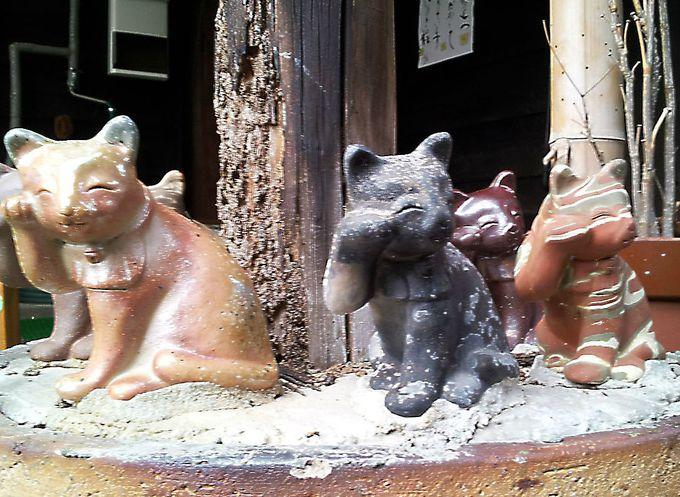 【スポット3】町のいたるところにネコの焼物が!そして本物のネコものんびり散歩