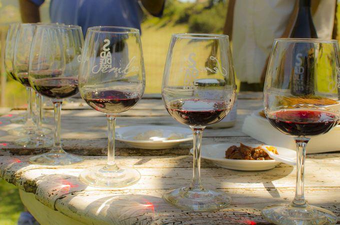 赤ワインは岡の上でワイン畑を眺めながら