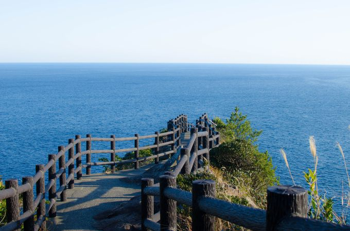 海へと続く道「日向岬展望台」は必ず行くべし!