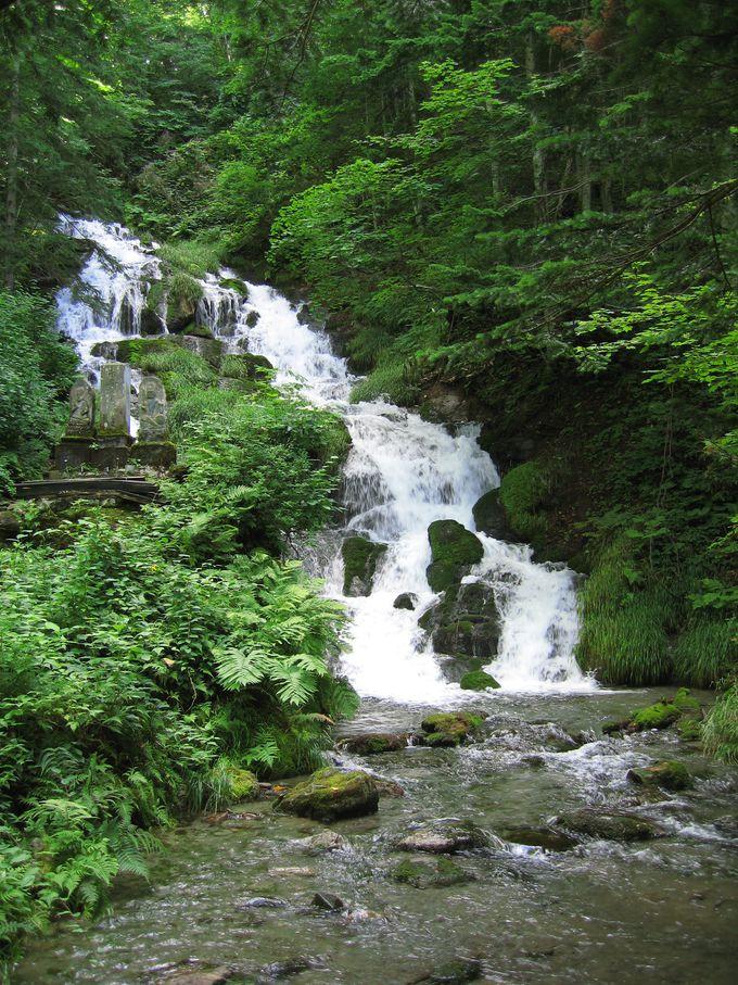 水しぶきが気持ちいい、神聖な滝。