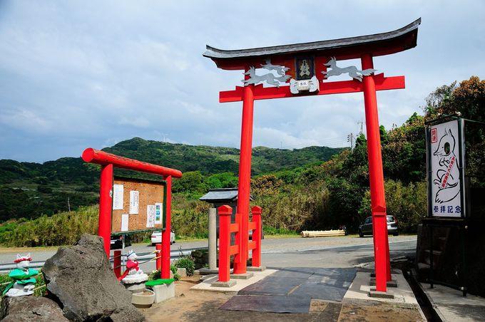 米CNNが選ぶ『日本の最も美しい場所31選』の1つ「元乃隅稲成(もとのすみいなり)神社」