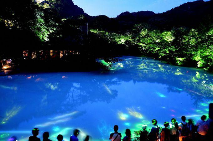 「チームラボ」とのコラボ・池全面が巨大なスクリーン