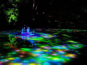 佐賀の幻想庭園「御船山楽園」チームラボの絶景アートで感動の夜を!!|佐賀県|トラベルjp<たびねす>