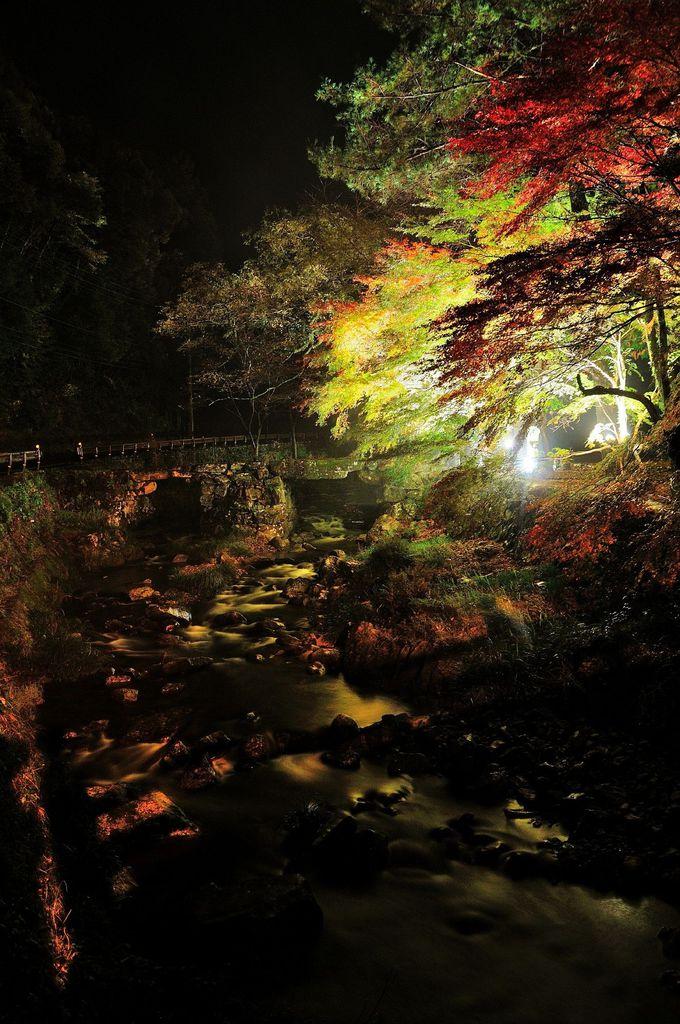 川沿いの紅葉が素敵な、長門市「大寧寺」