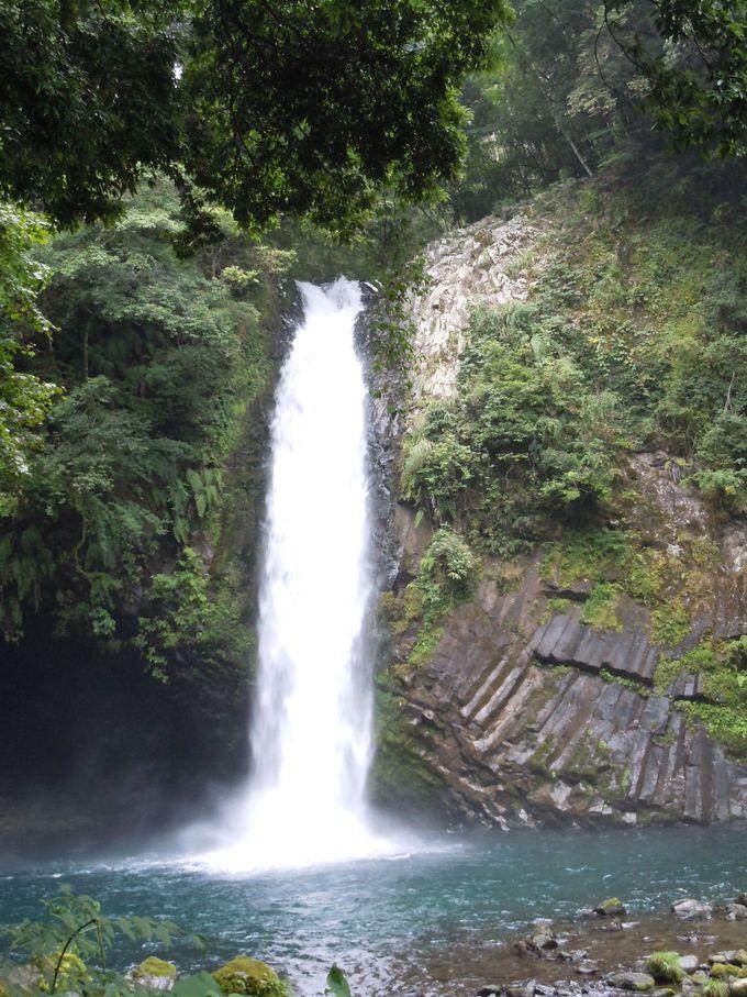 すがすがしい空気に囲まれた浄蓮の滝。