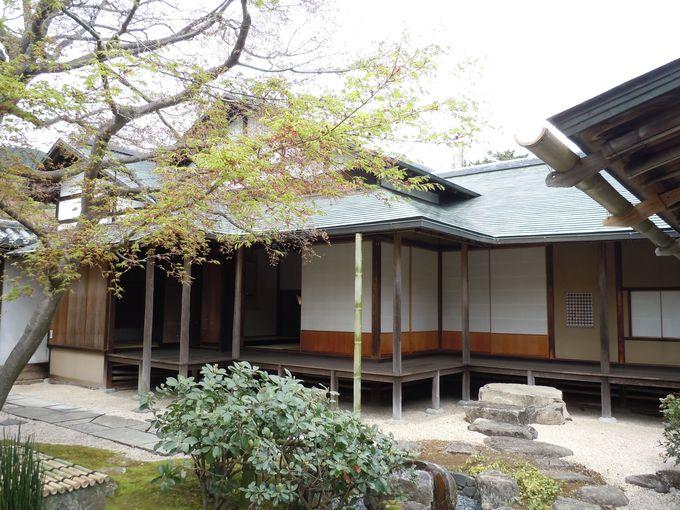 落ち着いた日本庭園。