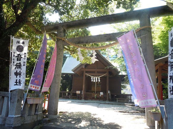 鎮守の森に包まれた神社