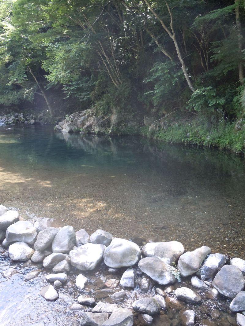 天城の清流で水遊び!伊豆市「水恋鳥広場&萬城の滝」