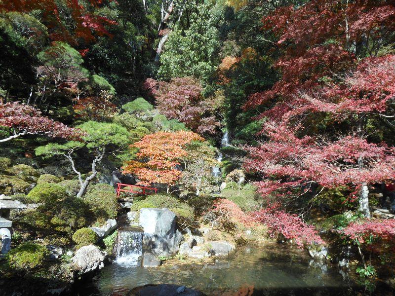 修禅寺庭園「秋の特別公開」と修善寺の紅葉名所めぐり〜伊豆市〜