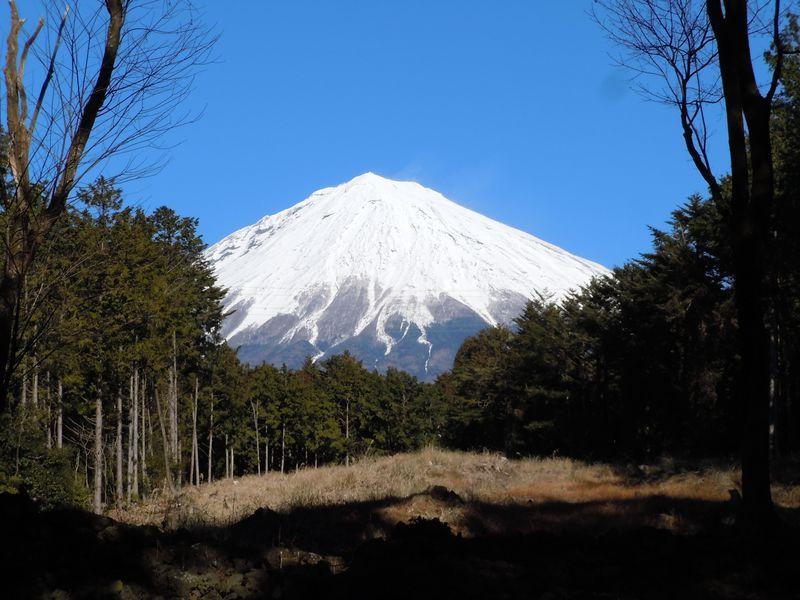 富士山を拝む!最強のパワースポット「山宮浅間神社」〜富士宮市〜