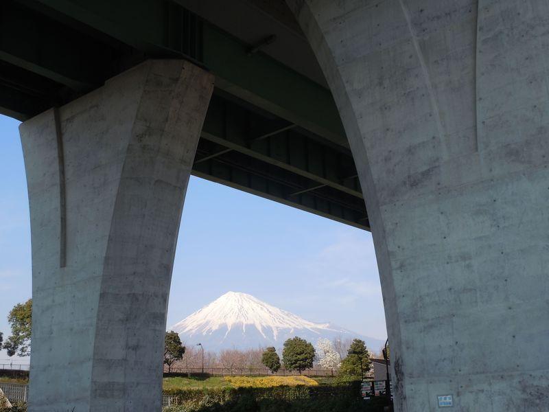 橋脚マニア必見!新東名の真下にある富士市「富士西公園」