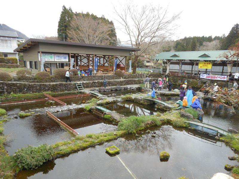 名瀑・名水・虹鱒釣りにも挑戦!富士宮で富士山の湧水と遊ぼう