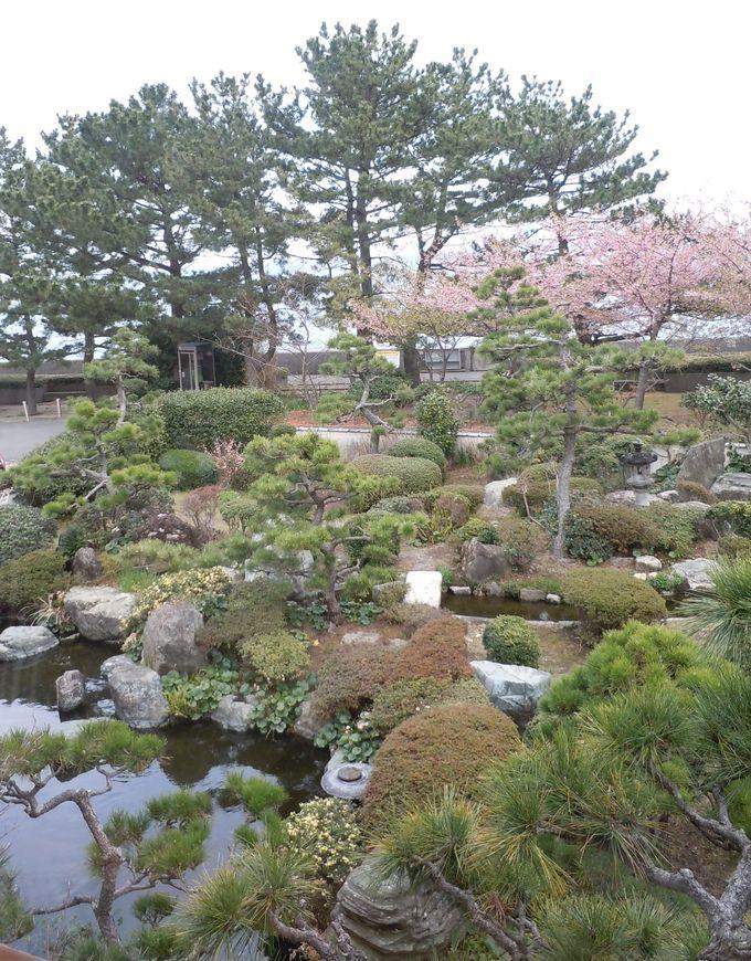 河津桜見物も楽しめる!ほっこりのんびりできる温泉宿